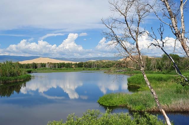 沙漠中的湖泊