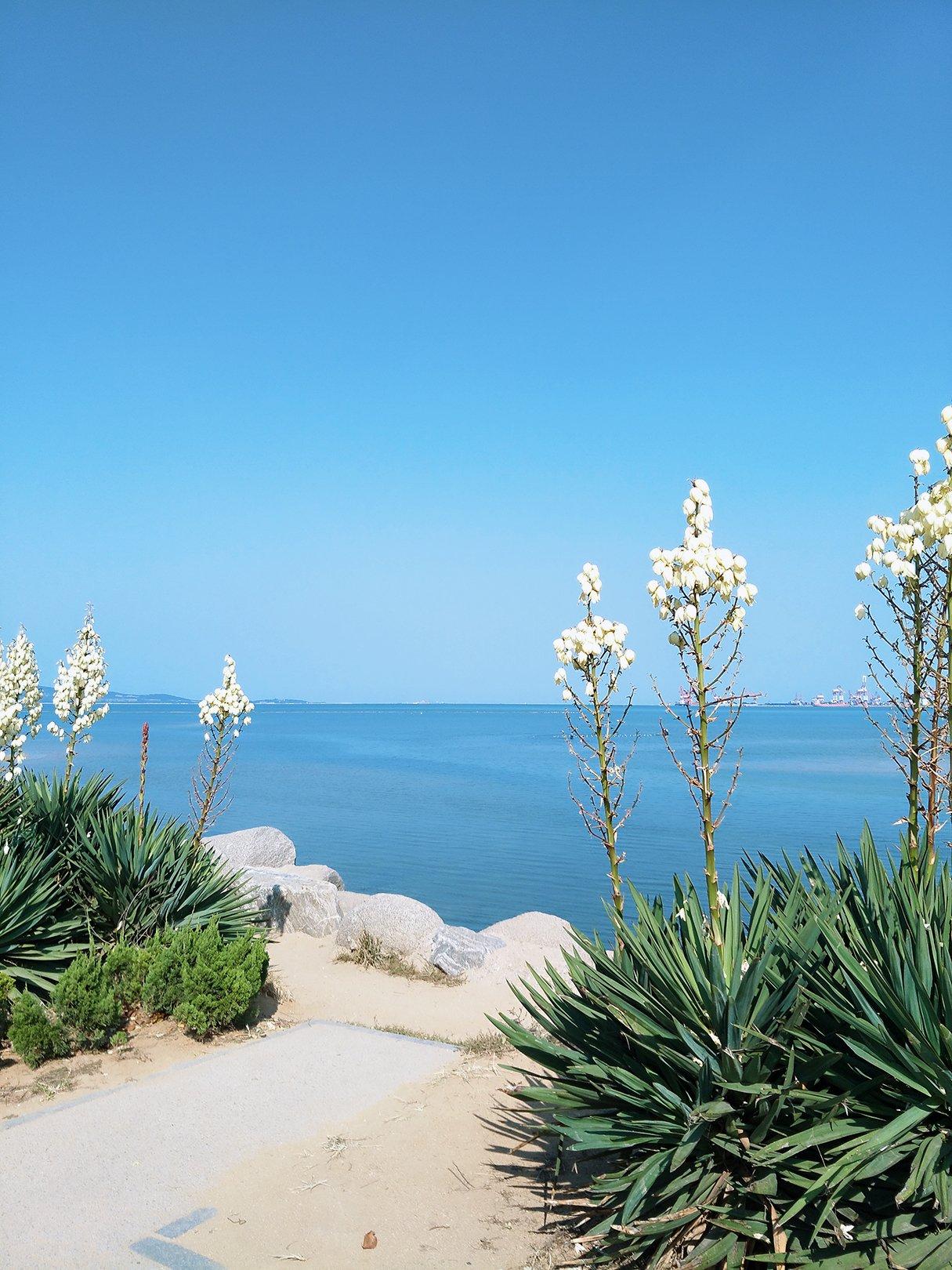 威海 ——  一城海水,半城繁华。