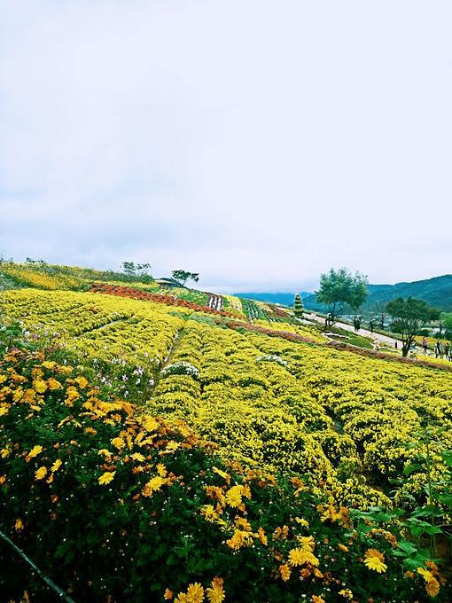 韩国光州 全南旅游文化观光体验之四