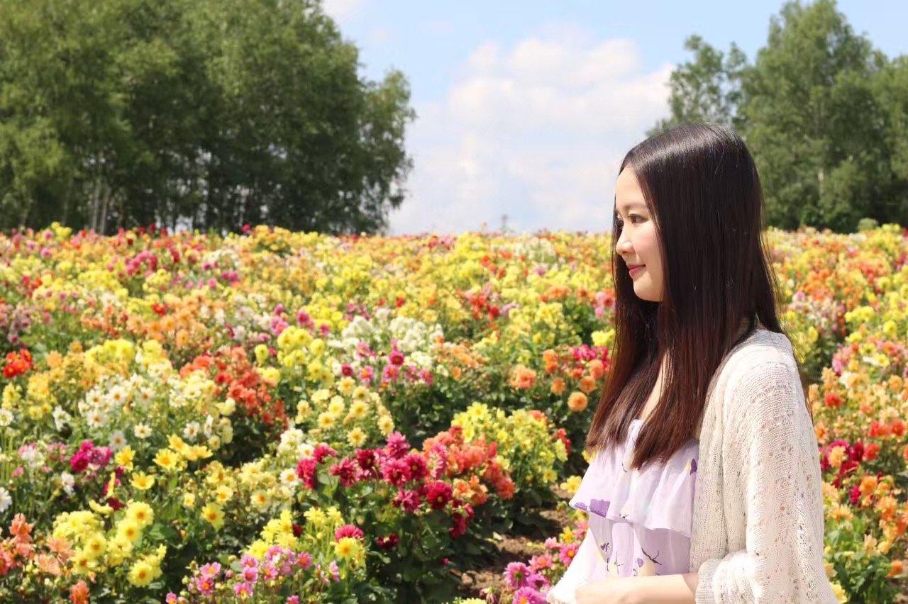 劳逸结合的~日本赏花购物之旅