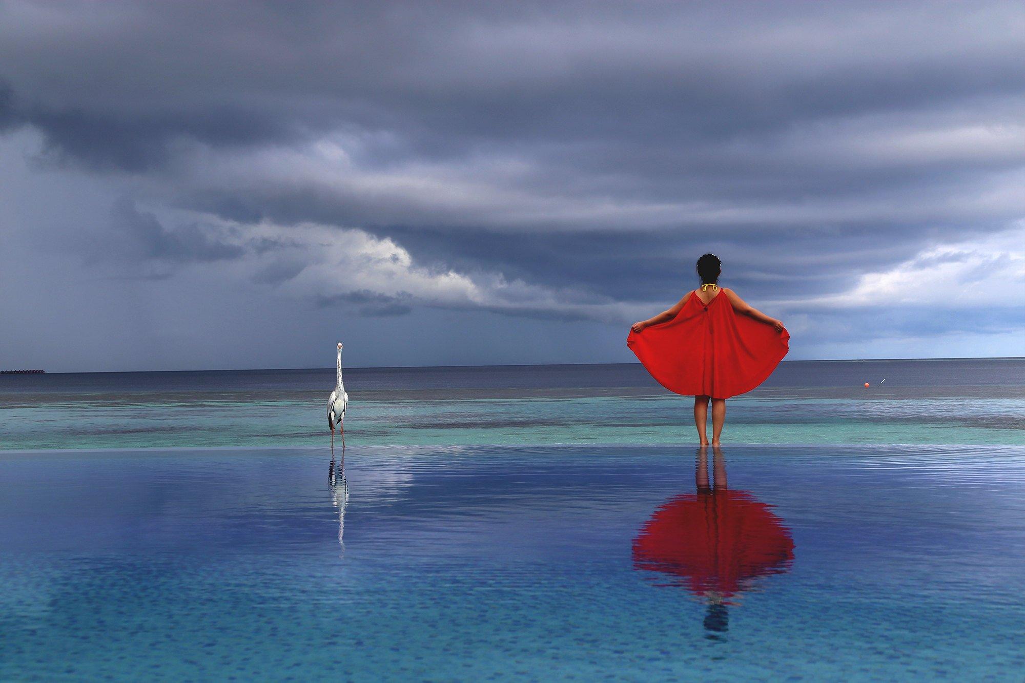 印度洋上的莉莉岛奇幻之旅