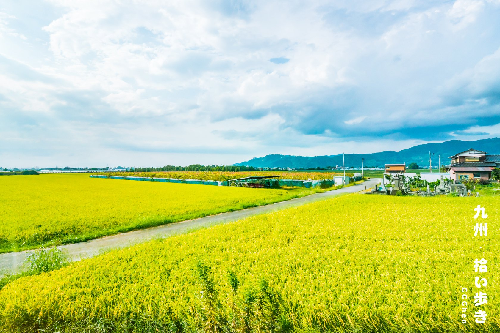 闲散在福冈-熊本-阿苏-由布院的五天旅行