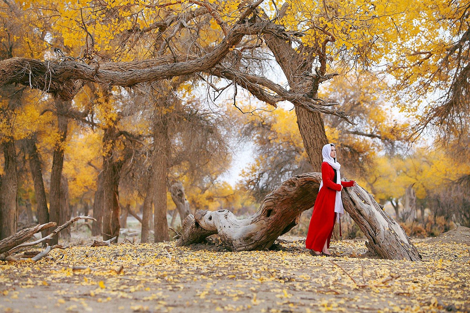 带着摄影师去旅行----寻找秋日里最明亮的色彩
