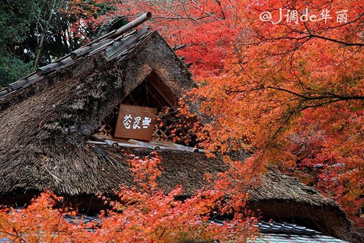 只有在春天和秋天赏红叶的季节才对外开放,可以欣赏到和充满历史气息