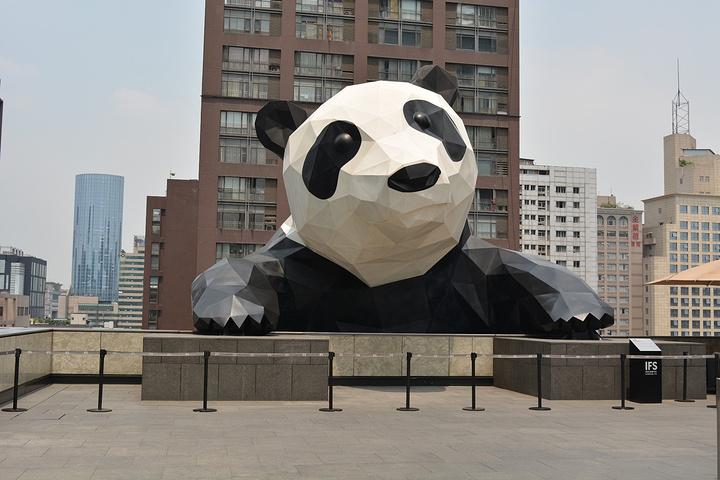 上到ifs的顶楼,观看熊猫的芳容啊,近距离看还是很大的呀