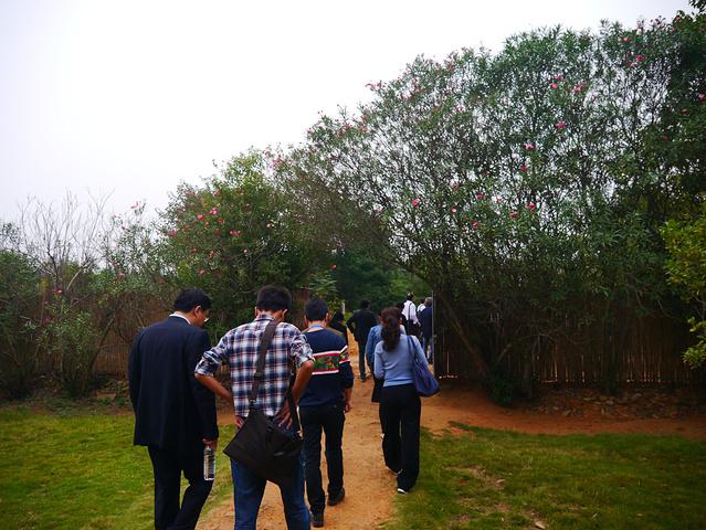 小平一体,地处江西省新建县望城岗,是一个集休闲纪念,教育为小道纪念起亚福瑞迪正时对法图片