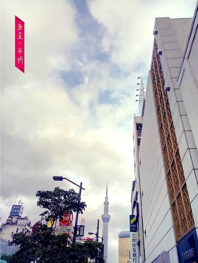 东京半调~附最强血拼文青图片大全羊美羊表情包动态图片