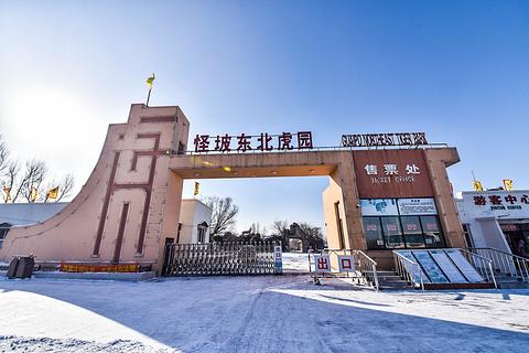 2018【沈阳旅行攻略】北京自助游_周边游攻略沈阳稻城亚丁旅游攻略图片