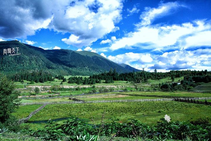鲁朗,位于西藏林芝市色季拉山下,是西藏植被覆盖率最高的地方,天然氧吧,海拔低,是休闲度假的好去处。去鲁朗可以乘坐林芝至成都、八一至波密、林芝至昌都的班车,都会途径鲁朗。现在鲁朗已经打造成了欧式小镇,新建的很多宾馆度假村,条件都不错,就是贵。鲁朗最著名的当属石锅鸡,石锅用的是墨脱制造的,最好的。食材均是当地采摘的,纯野生的。所以石锅鸡是非常好吃的。我2012年来的时候就品尝过,汤也很好喝,吃完鸡和菌类可以涮菜,和火锅一样,推荐来吃。
