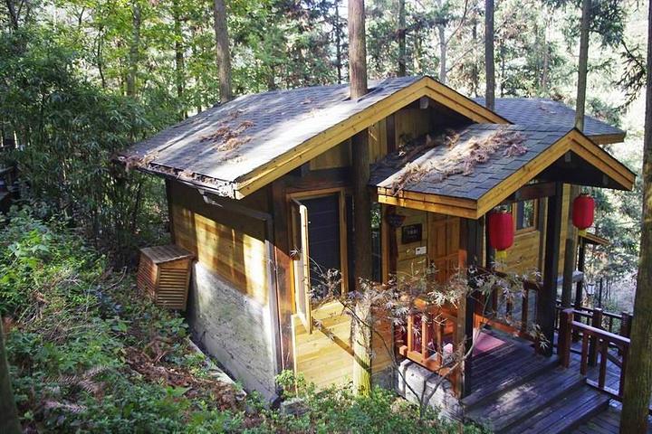 89首页样板森林森林坐落在山间的17栋别墅别墅温泉,与木屋别墅木屋邦金新鼎森林图片