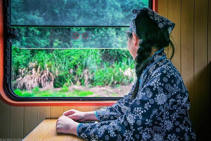 赣南森林小火车:世界级旅游.