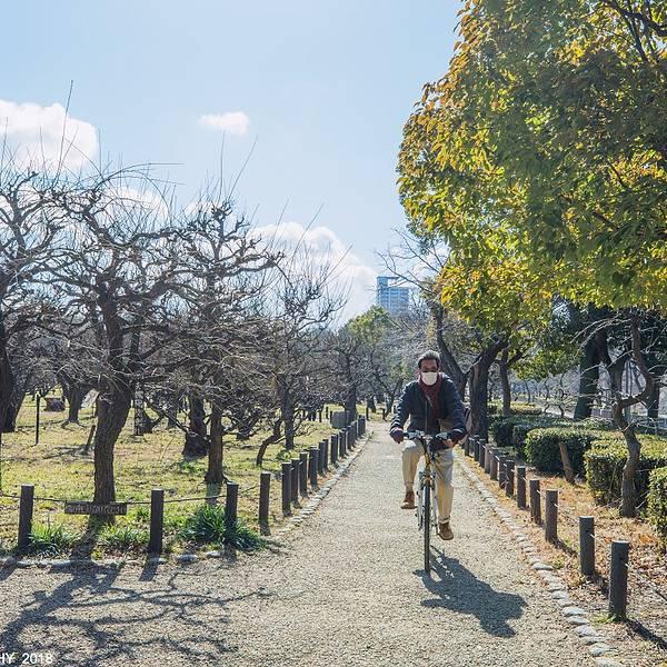 2019大阪城攻略门票,大阪大阪城公园游玩攻略黑龙江冬季v攻略公园图片