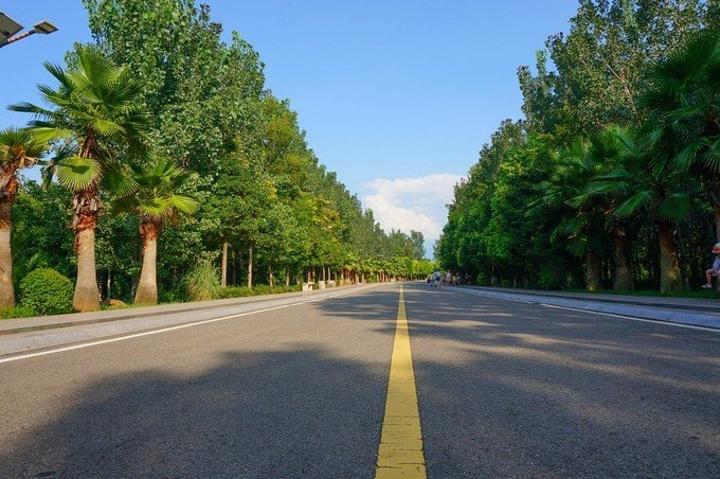 真实马路风景图片