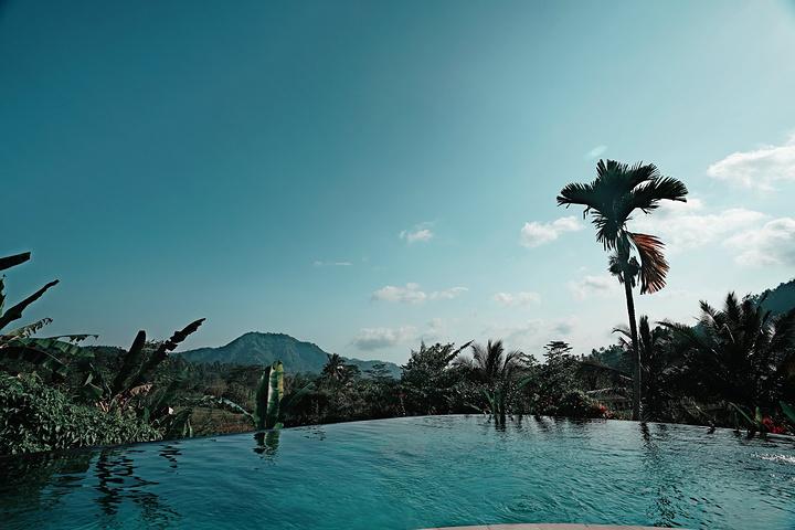 椰树别墅风景油画