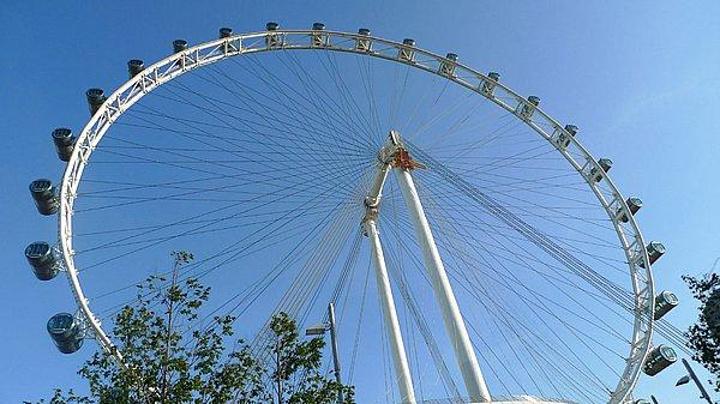 摩天轮坐落在滨海中心填海得到的土地上,从摩天轮上可以饱览新加坡市