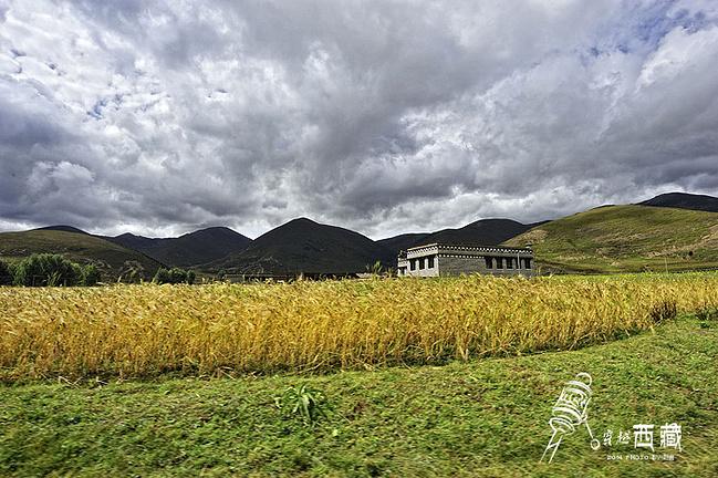 开车去甘孜从川藏线到青藏线_塔拉v攻略攻略_自助游西藏岛富士圣攻略图片