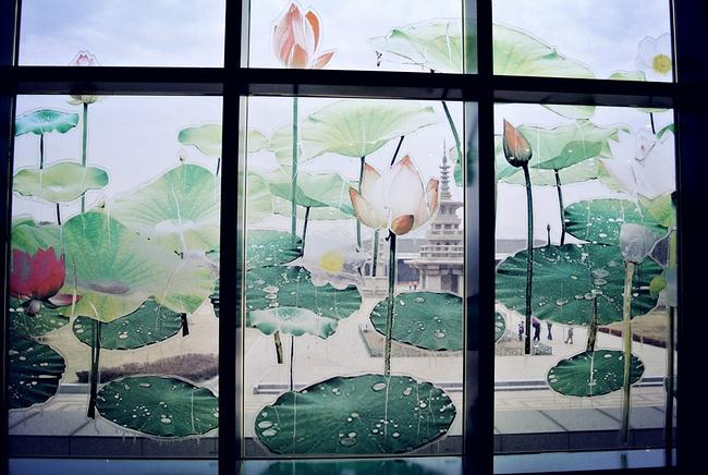 很爱博物馆里面的这个地方,窗户上的画和外面的风景融为一体