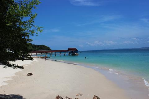 棉花岛旅游景点攻略图