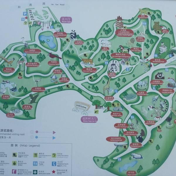 南京红山森林动物园