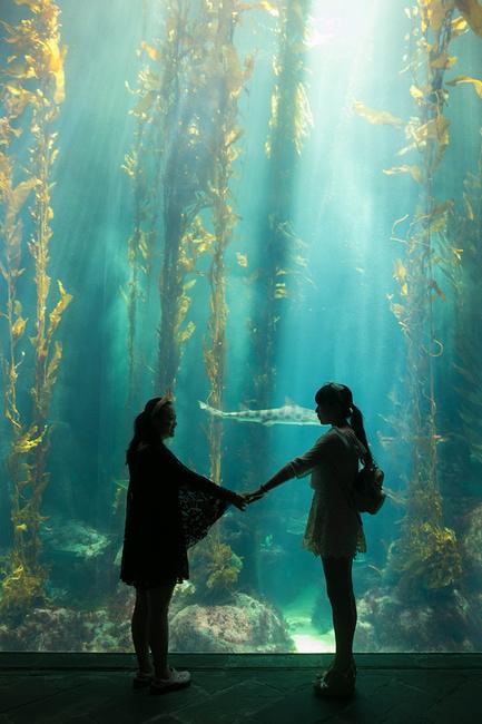 国立海洋生物博物馆图片