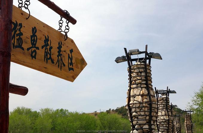 大青山野生动物园图片