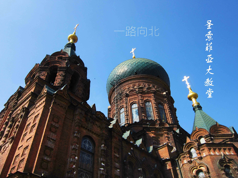 一路向北】北京哈尔滨齐齐哈尔呼伦贝尔-哈尔淘宝青蛙v青蛙东西喂攻略什么客人图片