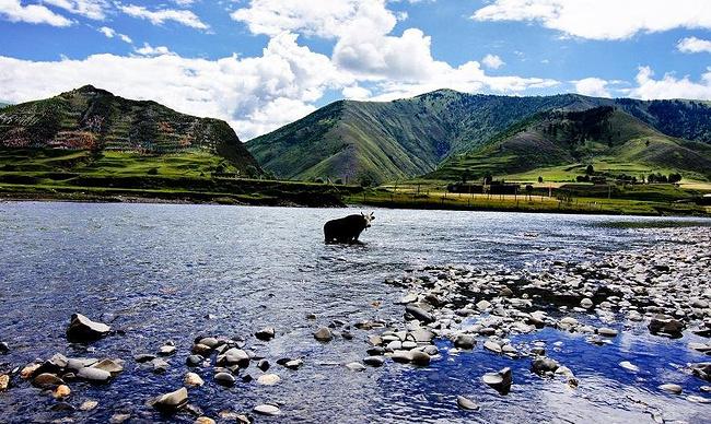 D7:关键词:塔公八美丹巴甲居藏寨宿:甲居藏寨图片