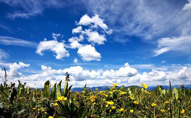 318国道沿途的美景图片