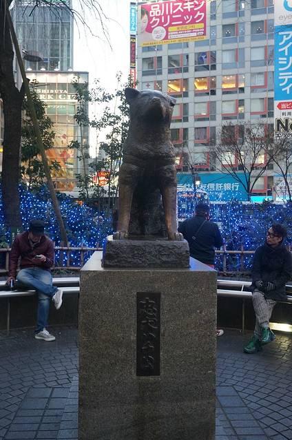 点评(17 条) 八公铜像位于世界最大的地铁站之一的涩谷站前,是东京人
