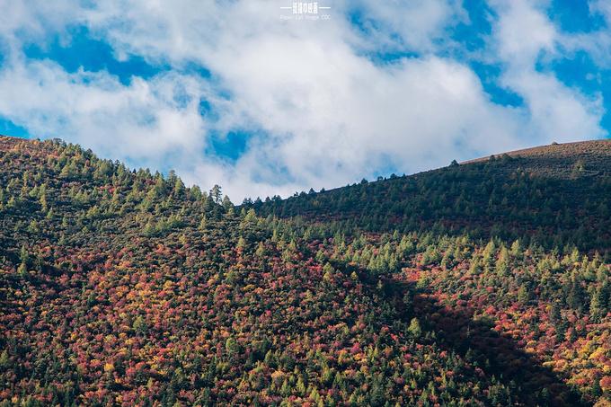 渐变的彩林美景图片图片