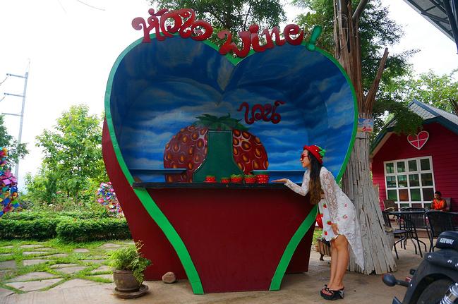 清迈箱根拜县,我的小a之旅之旅草莓_清迈v之旅攻北海道东京清莱攻略图片