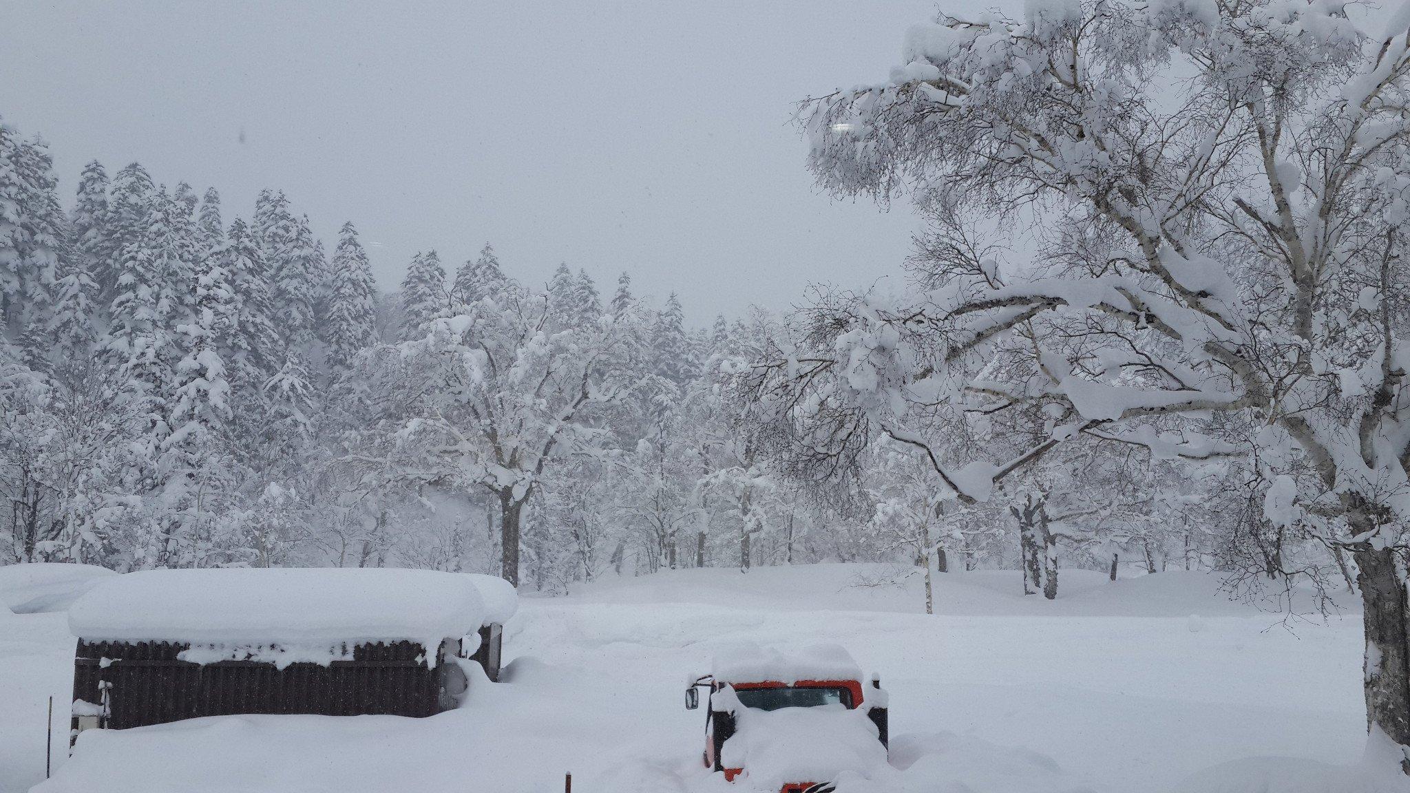 一生中最美的梦幻白——北海道十日游