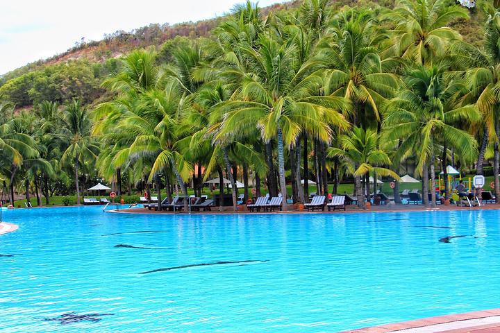 """""""这里拥有东南亚最大的游泳池_芽庄湾珍珠岛高级度假酒店(vinpearl nh"""