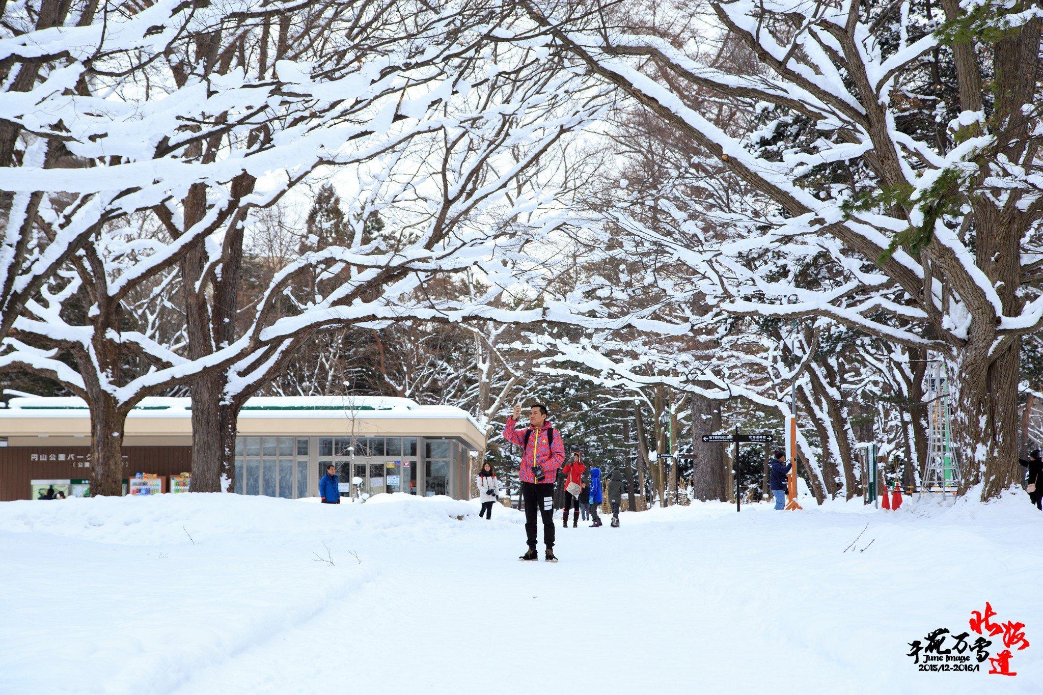 千花万雪北海道】小樽、札幌、洞爷、大沼、函假期一日游攻略图片