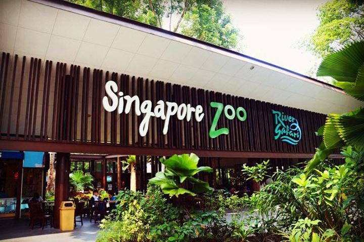 世界十大动物园之一,采用全开放式的模式,园区内以天然屏障代替栅栏.