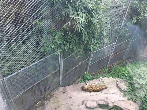 遵义动物园