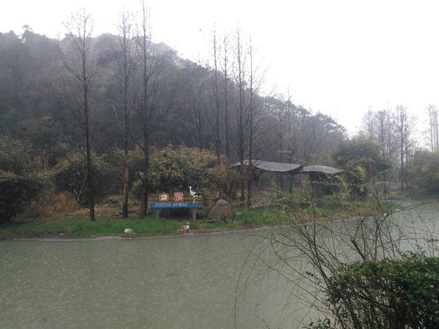 也是一家野生动物园呢,它在宁波著名景区东钱湖风景度假区内.