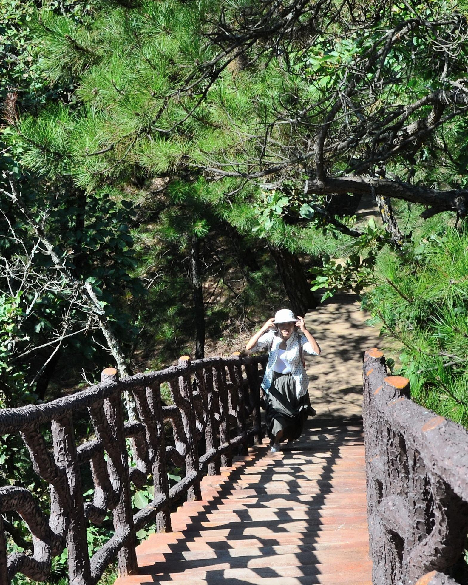 2019陕西黄陵国家森林公园游玩攻略,除一截支架外,是.