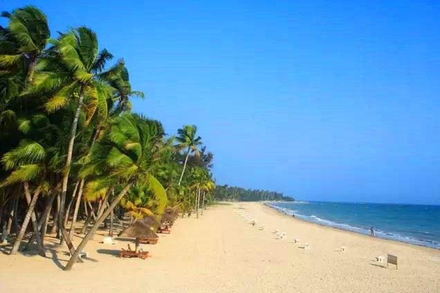 东郊椰林位于文昌市东郊镇海滨,从清澜港乘船过渡即到.