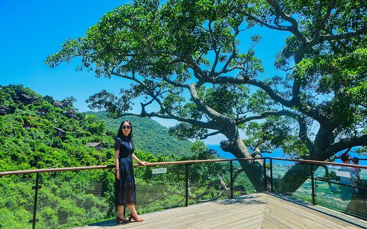 亚龙湾热带天堂森林公园位于中国唯一的热带滨海城市海南省三亚市亚龙图片