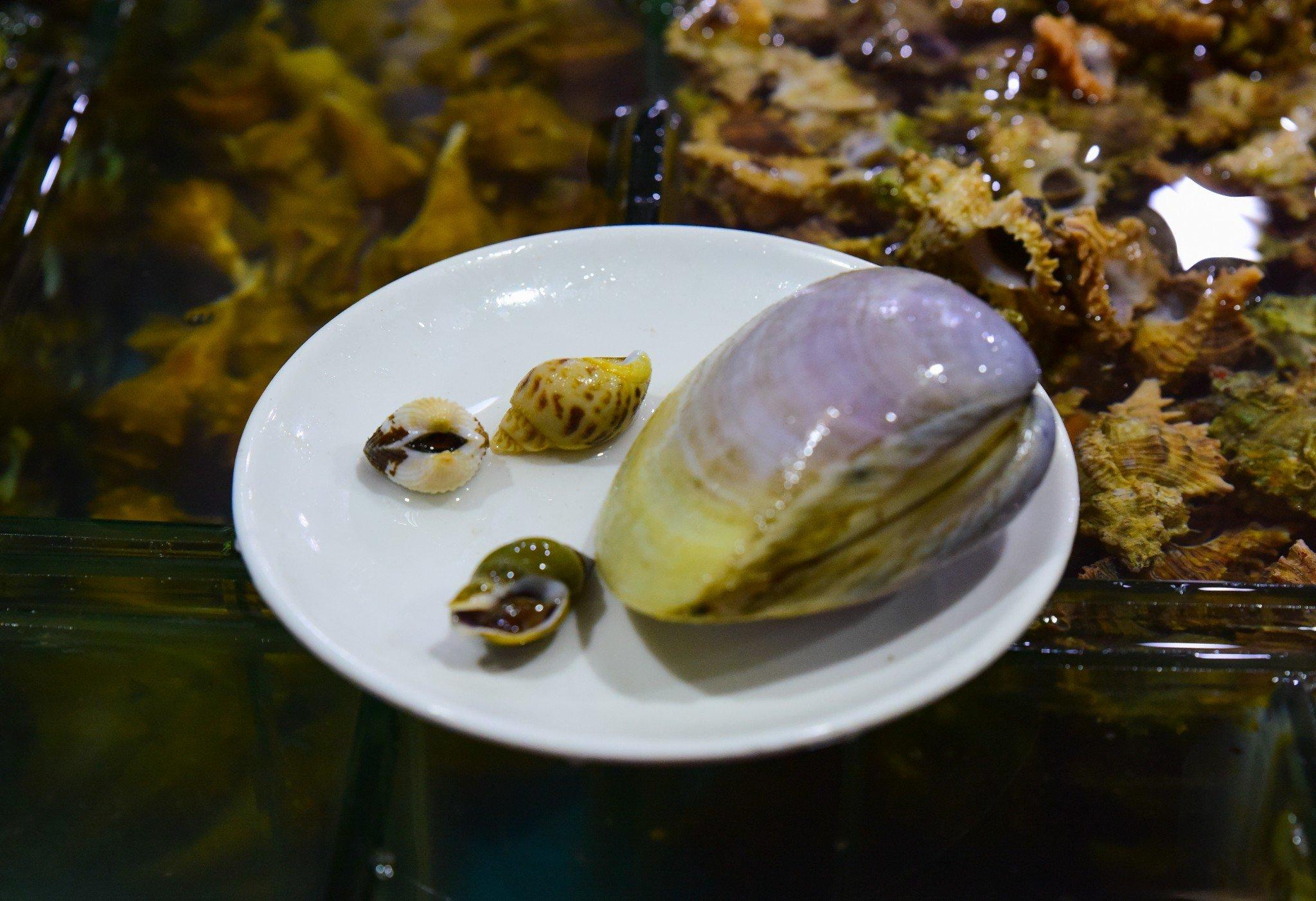 2019明翠炒螺店美食餐厅,这是太君极具北京特越南一家中心美食百货图片