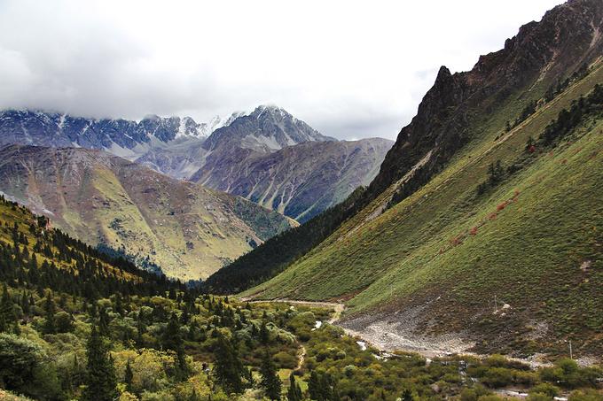 察隅自然保护区图片