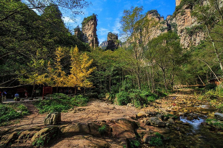 金鞭溪沿线是武陵源风景区最美的一段路,徒步全长约7.