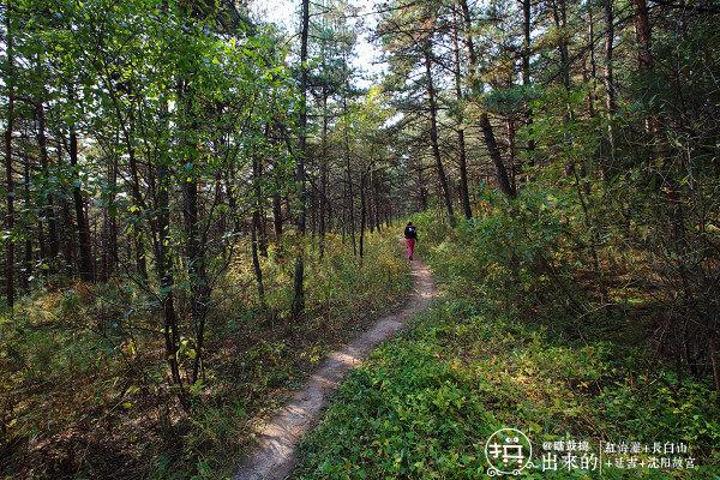 """""""延吉市帽儿山国家森林公园,位于延吉市西南."""