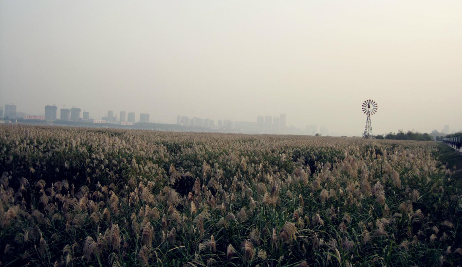 【环游中国】大学四年我所走过的武汉三镇