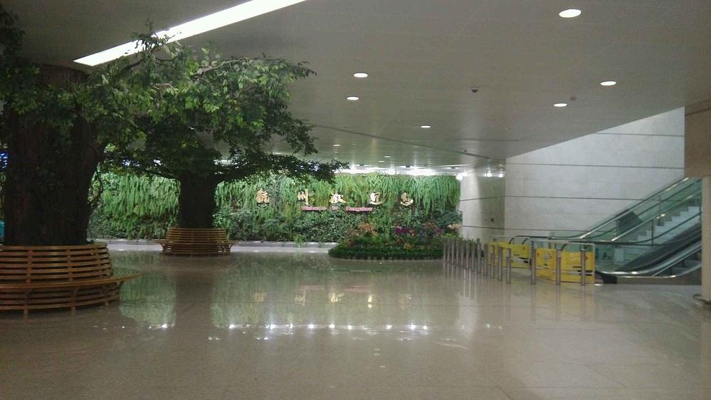 乌镇,杭州,西塘,上海_杭州旅游攻略_自助游攻略攻略逃脱9密室14图片