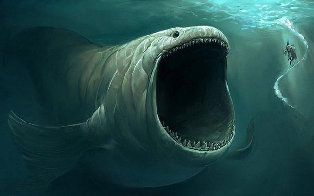 duImg大型哲罗鲑图片-鱼 鱼 类 640图片