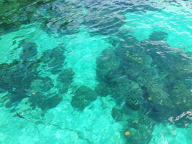 芭雅岛海洋公园图片
