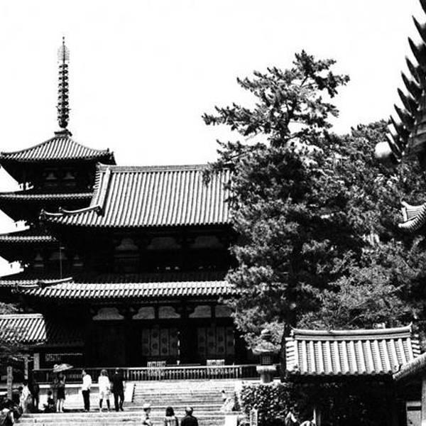 印象最深的就是法隆寺~法隆寺位于斑鸠地区,相对游人比较稀少.