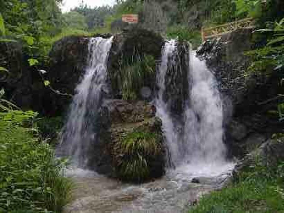 赫章国家森林公园旅游景点图片